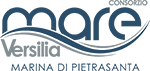 consorzio mare versilia Logo